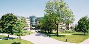 SWM-Zentrale-Sommer-Foto-Stefan-Obermeier-e1500904200698_300x150px