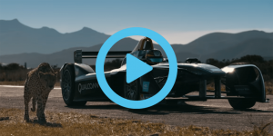 formel-e-cheetah-2017-short-curcuit-video