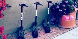 bird-scooter-sharing-startup