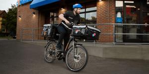 dominos-rad-power-bikes-pedelec-e-bike-2019